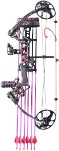Top Point Archery Compound Bow
